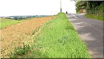 J4772 : The Killynether Road, Newtownards - August 2014(2) by Albert Bridge