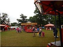 TM1645 : Merry Go Round, Christchurch Park by Hamish Griffin