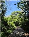 SX3468 : Lane at Lendra by Derek Harper