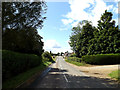 TM2993 : Hempnall Road, Woodton by Adrian Cable