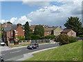 SK4092 : Richmond Park rooftops by Graham Hogg