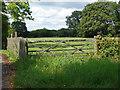 SU8872 : Wooden gate off Church lane by Alan Hunt
