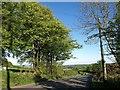 SX3670 : Florence Road by Derek Harper