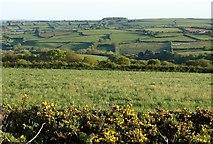 SX3970 : Farmland around Harrowbarrow by Derek Harper