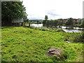 NS8093 : River Forth, Cambuskenneth by Richard Webb