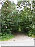 ST1106 : Former track to Barleycombe Farm by David Smith