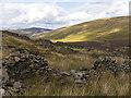NY2828 : Sheepfold near Skiddaw House by William Starkey