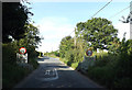 TM1341 : Entering Belstead on Grove Hill by Adrian Cable