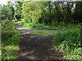 SU8672 : Footpath junction, Tickleback Row by Alan Hunt