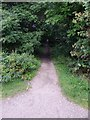 NO7095 : Access path to Morrison's supermarket by Stanley Howe