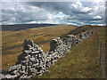 SD6360 : Broken wall on Hawkshead by Karl and Ali