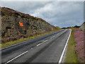 NF8873 : Yes Scotland 2014 by John Allan