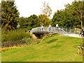 SJ3686 : Metal bridge, Festival Park by Norman Caesar