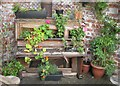SE3033 : Flowering piano by Dave Pickersgill