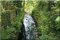 J3773 : Knock River / Orangefield river by John Thompson