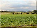 TM4454 : Looking over arable land to the Alde Valley, Sudbourne by Roger Jones