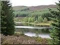 NN9147 : Loch Scoly by Richard Webb