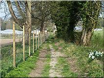 TQ2760 : Footpath towards Croydon Lane by Robin Webster