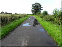 H6058 : Puddles along Tullylinton Road by Kenneth  Allen