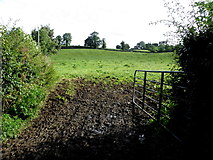 H6056 : Muddy entrance to a field, Crew by Kenneth  Allen
