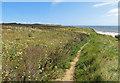 TA2369 : Headland Way LDP towards Flamborough Head by Pauline E