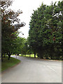 TL9637 : Entrance of Stoke By Nayland Golf Club by Geographer