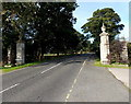 SK4103 : Gate piers at the eastern entrance to Bosworth Park, Market Bosworth by Jaggery