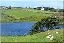 D1548 : Ally Lough, Rathlin Island by Bob Jones