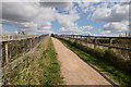 TL5567 : Approach to Cycle Bridge over Reach Lode by Kim Fyson