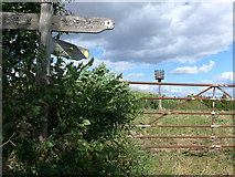 SU6022 : South Downs Way, Winchester to Exton (170a) by Basher Eyre
