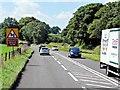 SJ8470 : Congleton Road (A34) South of Siddington by David Dixon
