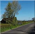 ST4267 : Ivy-clad farm building near Crossway Farm by Jaggery