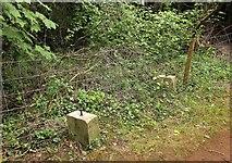 SX9364 : Fence and bench base near Walls Hill by Derek Harper