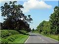 SJ8062 : A534 near Brookhouse Green by David Dixon