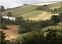 SX8950 : Valley behind Mill Bay Cove by Derek Harper