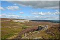 SE0296 : Grouse butt on Harkerside Moor by Trevor Littlewood