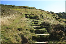 SY6873 : South West Coast Path by Guy Wareham