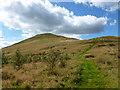 NN9901 : Path up Seamab Hill by Alan O'Dowd