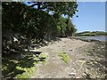 SX7541 : Foreshore near The Creek by Derek Harper