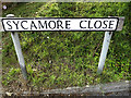 TM1342 : Sycamore Close sign by Adrian Cable