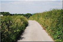 TQ4443 : Roman Road by N Chadwick