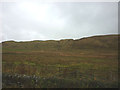 NY7366 : Rough pastureland south of Winshields Crags by Karl and Ali