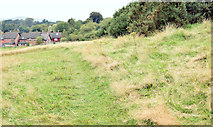 J3267 : Path, Edenderry village, Belfast - September 2014(2) by Albert Bridge