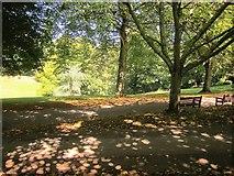 SX8963 : Paths, Cockington Court by Derek Harper