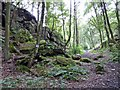 SE4006 : Valley (well railway cutting) of the rock faces by Steve  Fareham