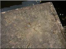 SO8453 : Benchmark at Diglis Lock by Shantavira