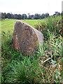 NJ6201 : Pink granite boulder by Stanley Howe