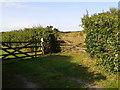 SX0581 : Gate entrances at Woodside Farm by Rob Purvis