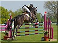SP8690 : Rockingham Castle Horse Trials: showjumping by Jonathan Hutchins