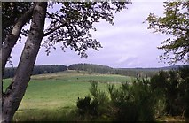 NJ6102 : View north from near Torphins Golf Club by Stanley Howe